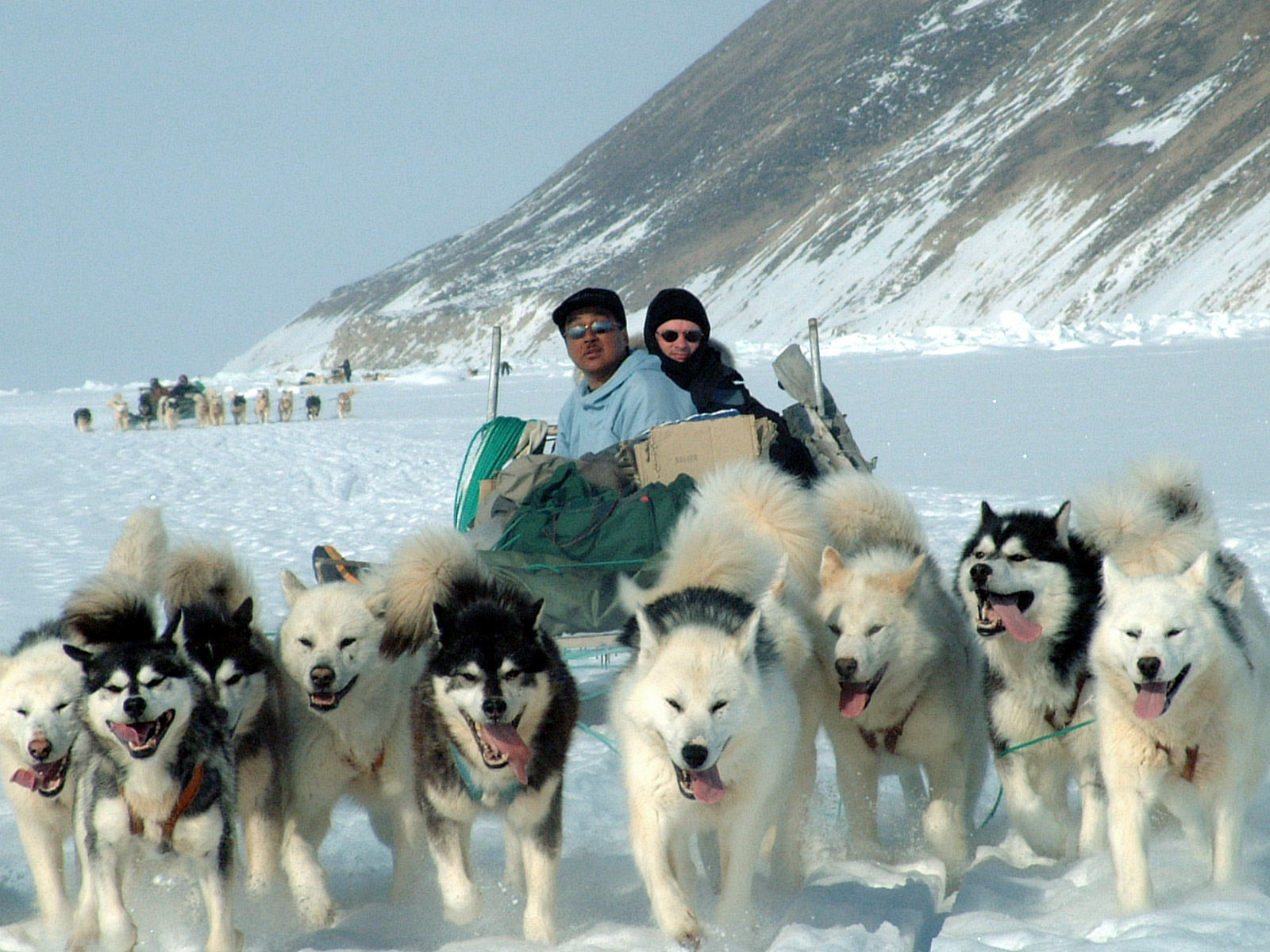 Image shows a photo of a sled carrying two men being pulled by 8 huskies.