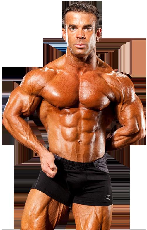 14.4.1 Bodybuilding and Veins