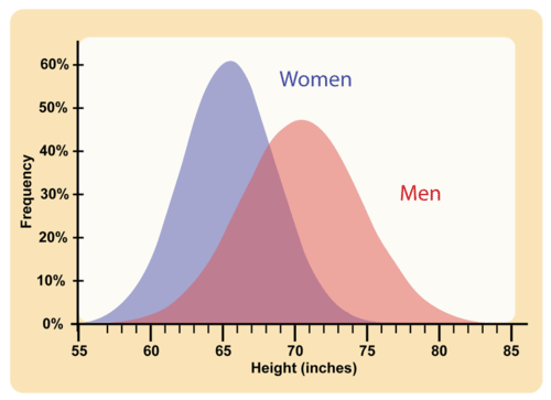 Like many other polygenic traits, adult height has a bell-shaped distribution.
