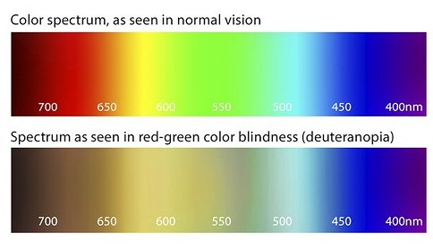 Image shows the difference in perception of colours between a person with normal vision and someone with red-green colour blindness.