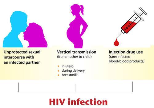 17.6.7 HIV Transmission