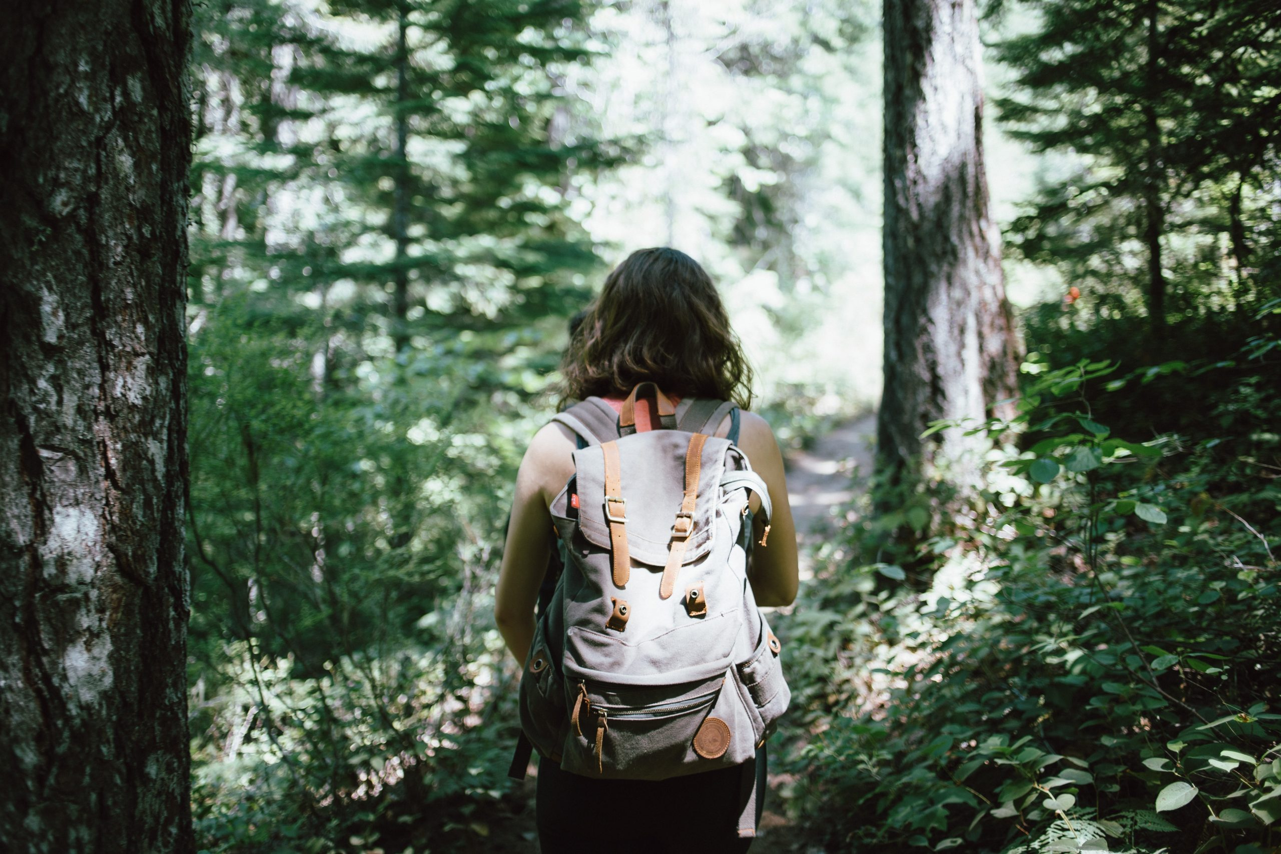 11.7.5 Hiking